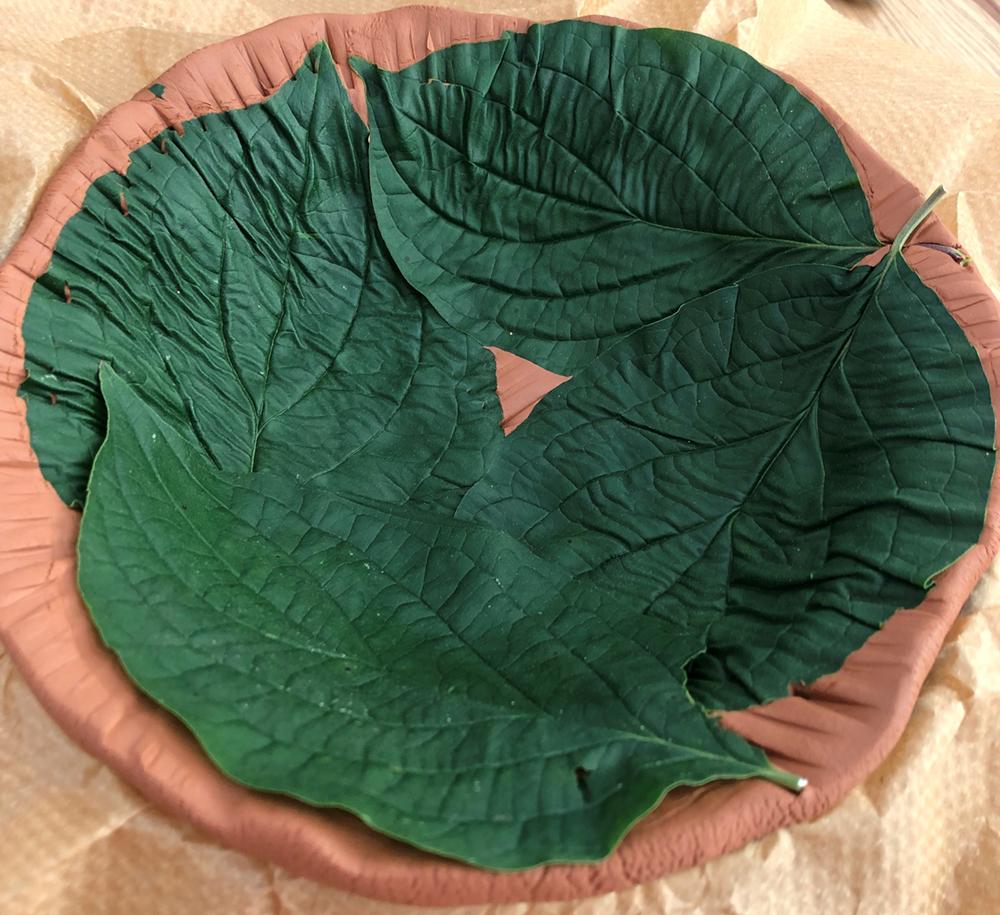Leaf Print Clay Bowl - Step 2