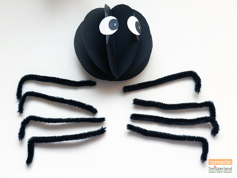 Photo of putting the scary spider together