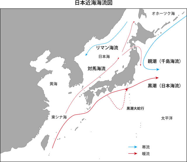 日本の海流