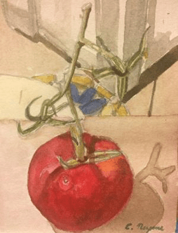 Watercolor painting of a red tomato on a vine.
