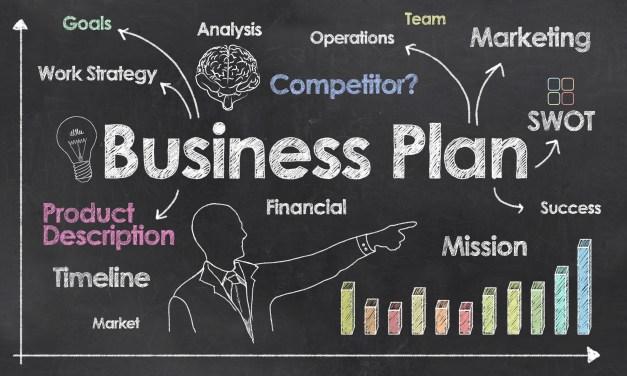 Ezenwa's Business Plan