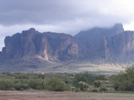 Arizona 010!