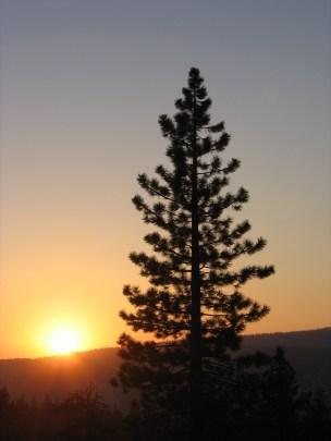 california 105