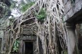 *Angkor-14.32.08