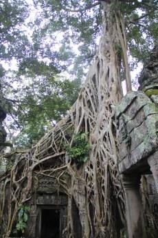 *Angkor-14.32.41