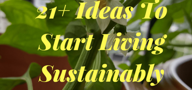 21+ Ideas To Start Living Sustainably #SuperBloggerChallenge2018 #InstaCuppa