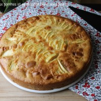 Gâteau aux pommes et au chocolat banc sans beurre de la Ligne gourmande