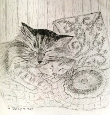 cats with pillow