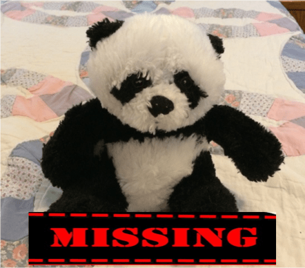 missing-panda-with-sign