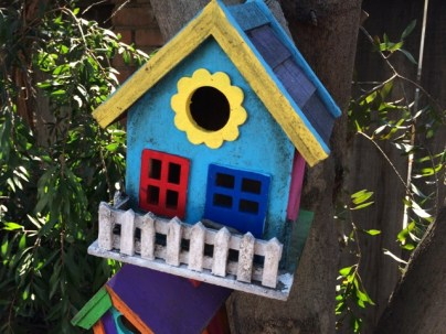 bird house with mold