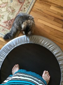 trampoline with feet 2