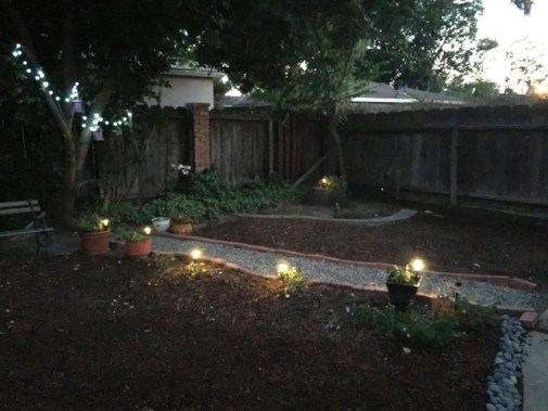 back yard lights on