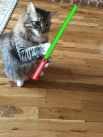 Foster and green saber2