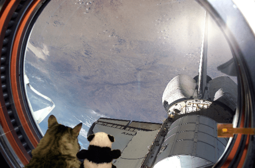 looking out of space shuttle b2