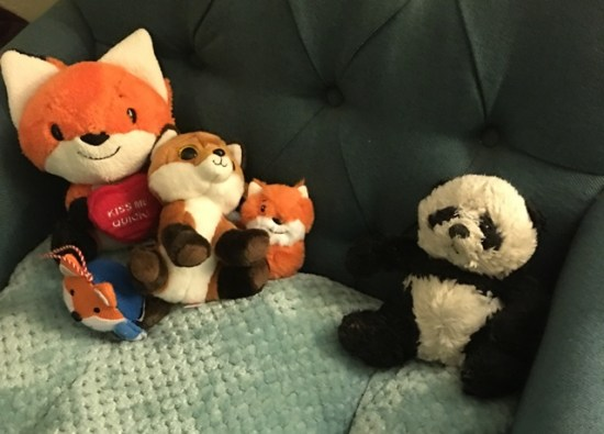 with fox collection