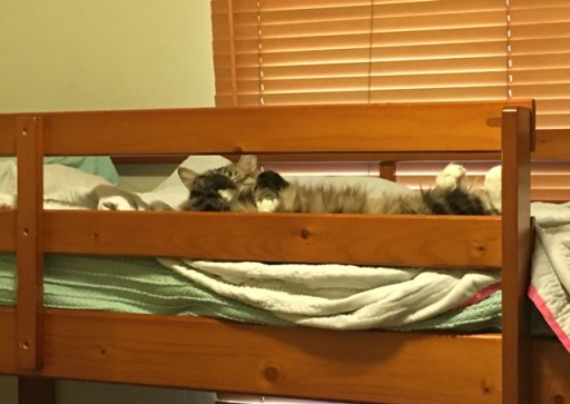feet on bunk bed