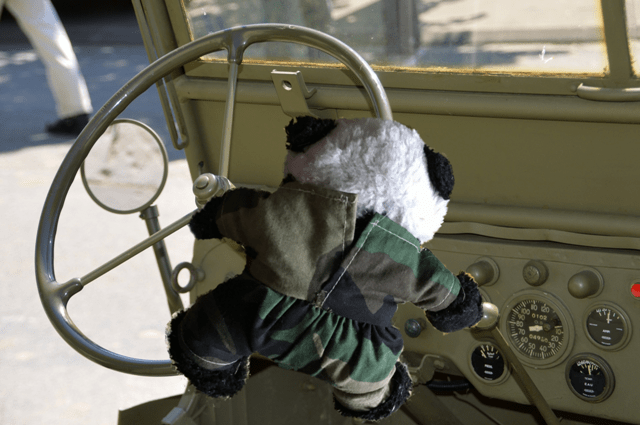 basic panda gear shift