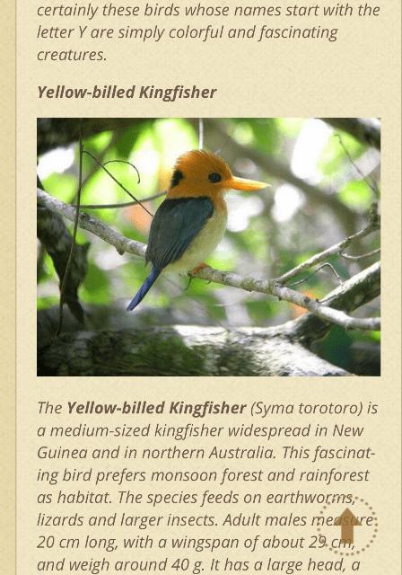king fisher search