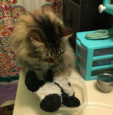 panda in water on sink
