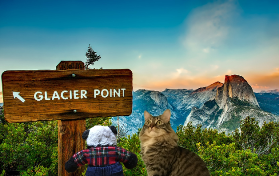 seeing glacier point sign