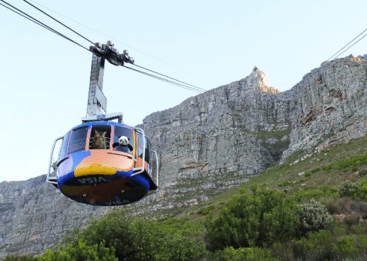 a riding cable car