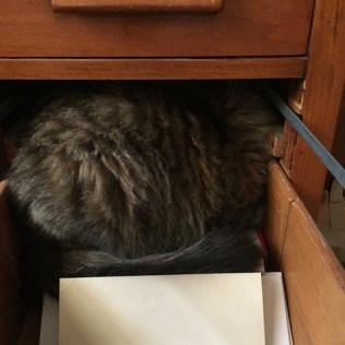 in drawer with paper