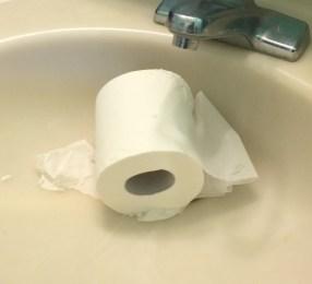 toilet-paper-in-sink