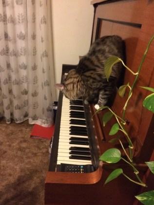 a-piano