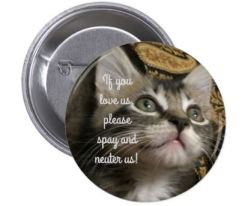 spay neuter button