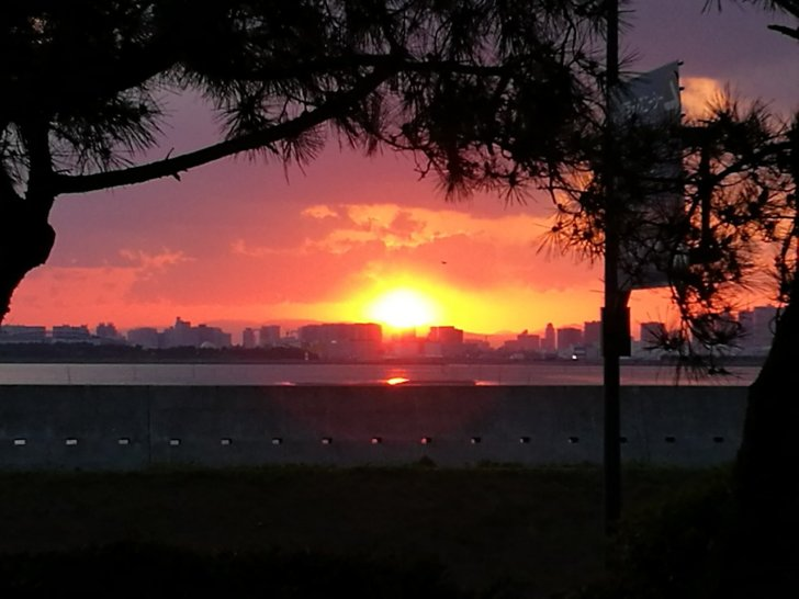 ヒルトン東京ベイからの夕日