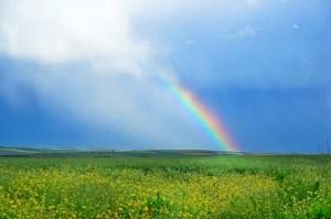 虹の絵具皿(十力の金剛石)-宮沢賢治-イメージ