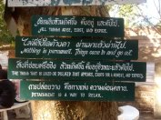 A Little Wisdom at Wat Umong Temple