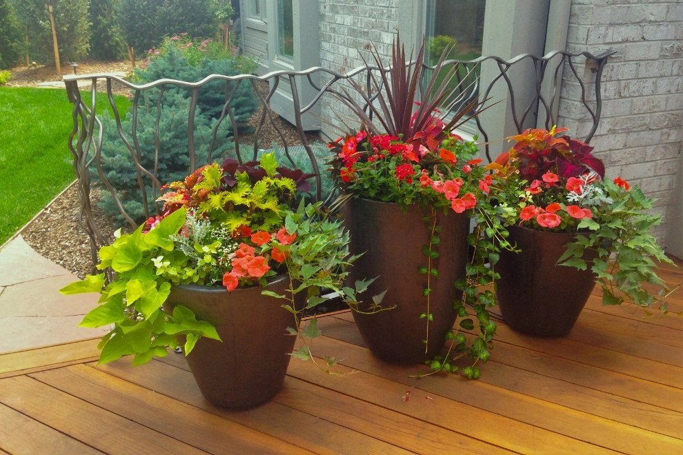 Jardine Residence - Container Gardens