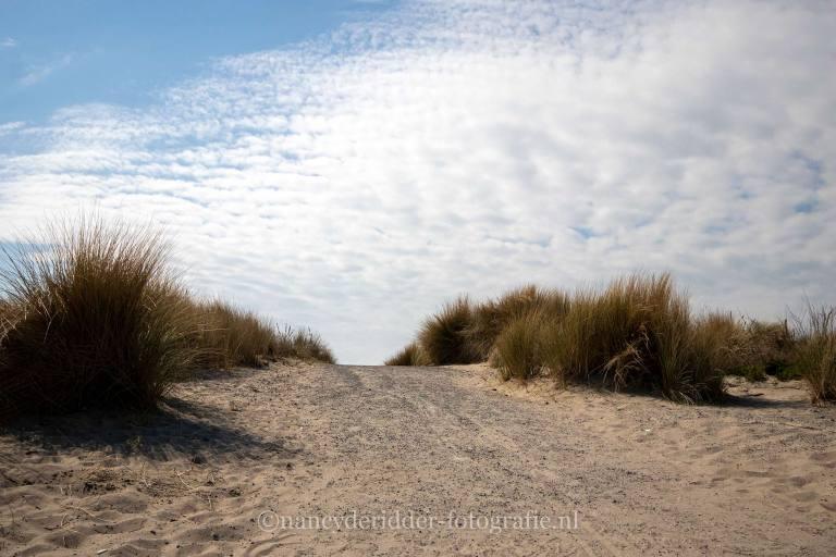 duinen, Hoek van Holland