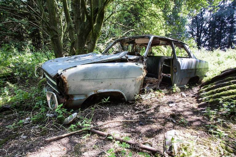 Lost in Woods, urbexlocatie, vervallen auto's