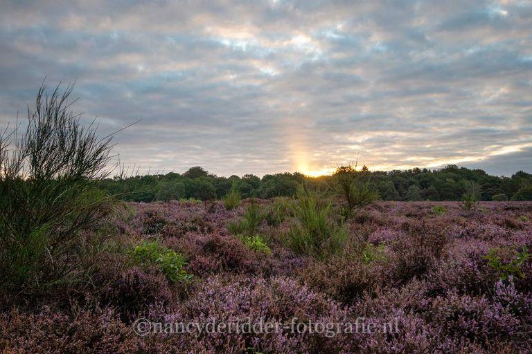 sunrise, zonsopkomst, vroeg-op, natuurfotografie, landschappen