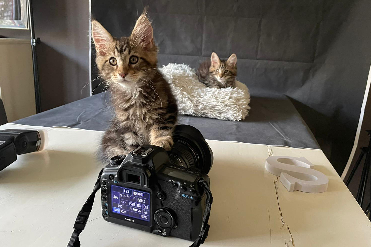 Foto Shoot