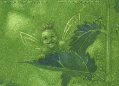 Urtica Dioica, Stinging Nettle Fairies - close-up 5