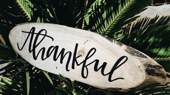 thankful online coach