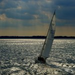 sailboat in the wind