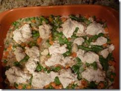 Chicken Stew1