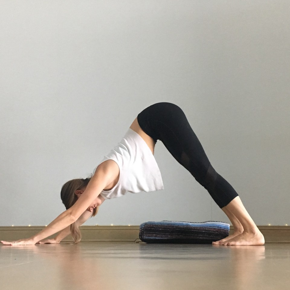 Yin Yoga Sequence - Low Back Love - Down Dog