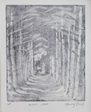 Quiet Light, zinc plate etching, acquatint