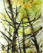 peng-sentinels-of-the-sun-watercolour-and-sumi-20x16-paper-on-wood-panel-500