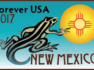 New Mexico State Stamp