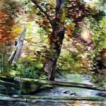 A creek with two telephone poles that bridge the gap from the fence on either side. Above rises a sycamore tree, with bursts of sunlight that pierce the dense early fall foliage. To the left of the live sycamore is the sharp, white trunk of a dead sycamore.