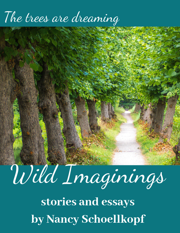 Wild Imagings Cover