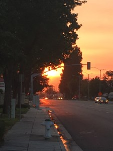 El Camino Real at dawn in Sunnyvale