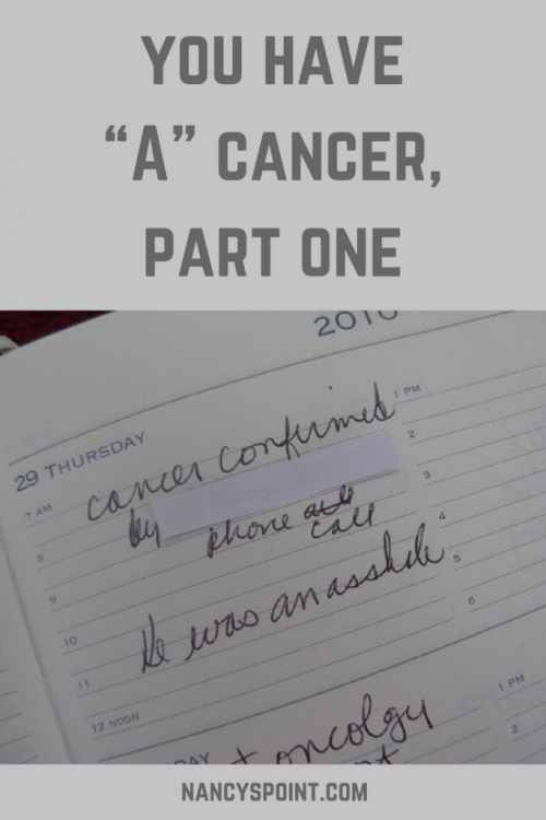 "You Have ""A"" Cancer, Part One #cancer #breastcancer #cancerdiagnosis #womenshealth #dogs"