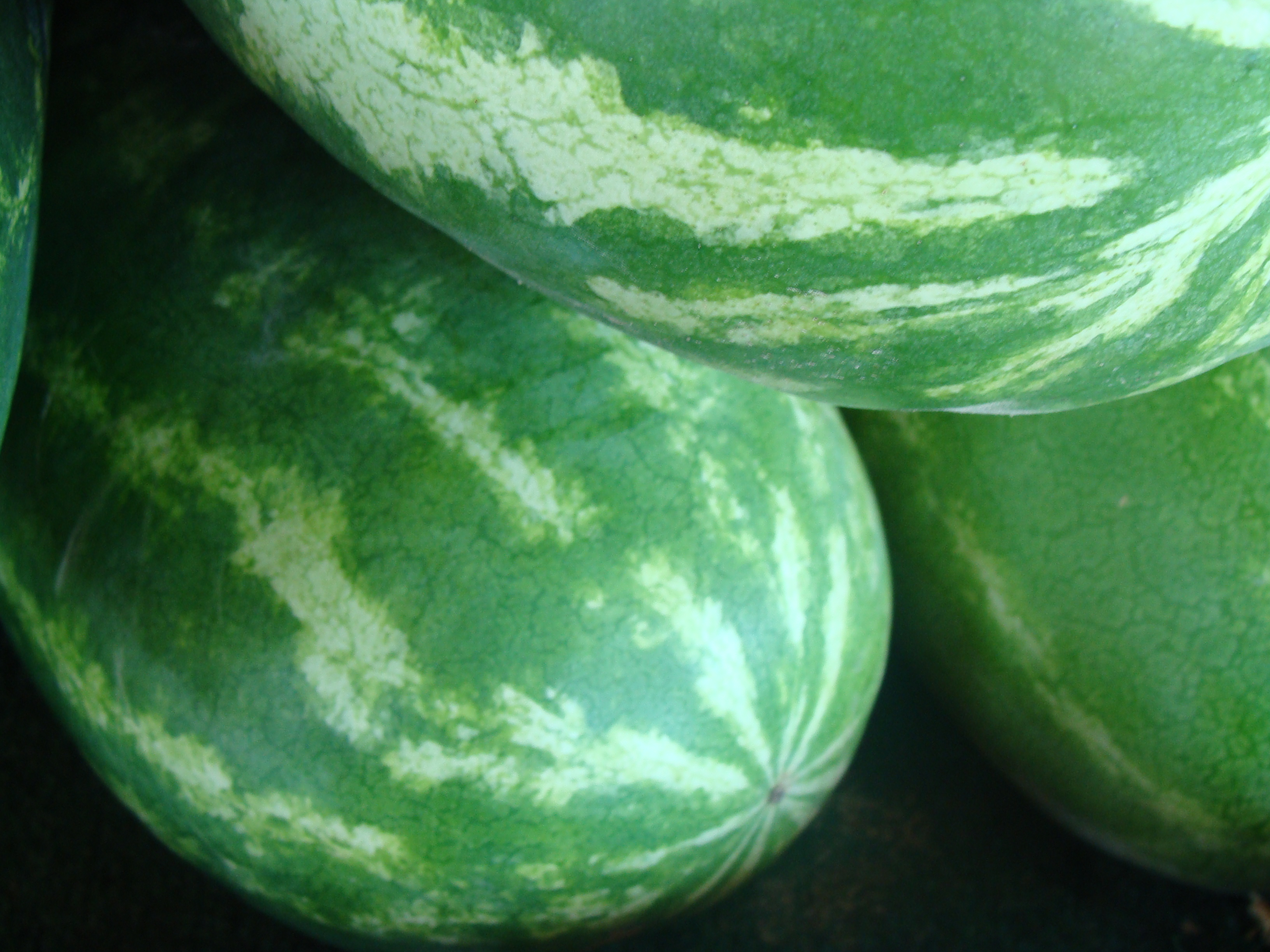 I love the green stripes on these watermelons